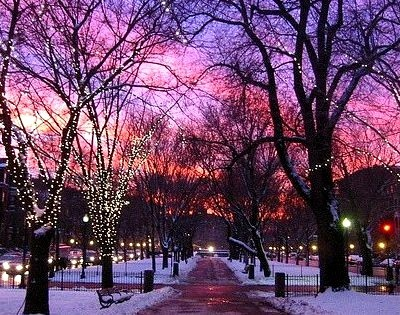 Beautiful Night, Boston, Massachusettes