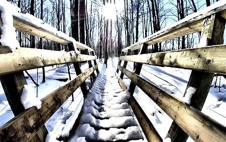 Snow Bridge, St. Paul, Minnesota
