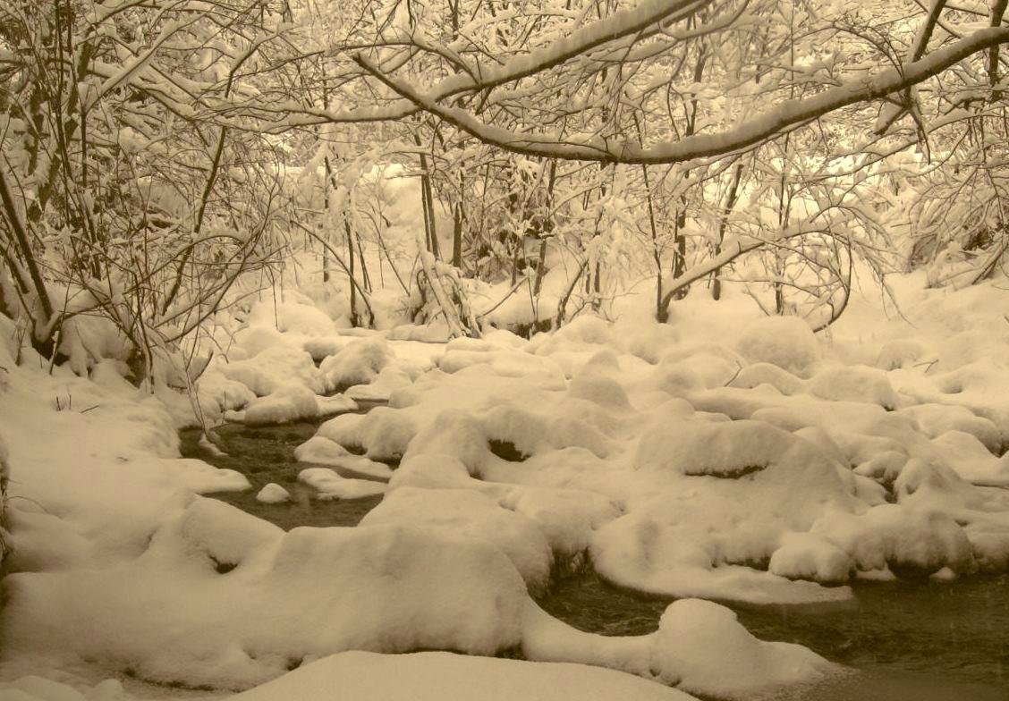 Magic of winter.