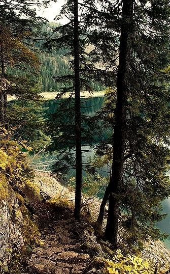 Stone path to Crno Jezero, Durmitor National Park, Montenegro