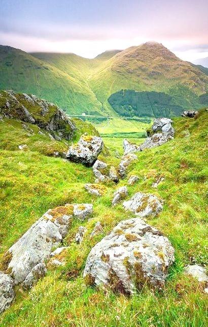 Summer Green, Ben Donich, Scotland
