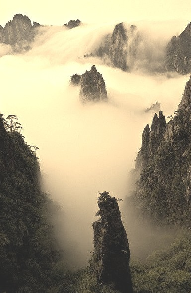 Cloud and mountain wonderland, Huang Shan, China