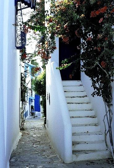 Beautiful narrow street in Sidi Bou Said, Tunisia