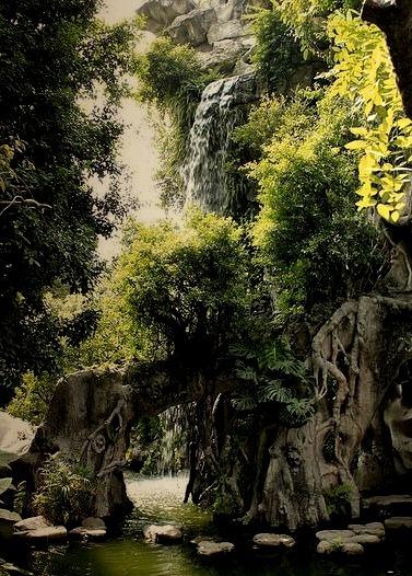 Shunde district gardens in Foshan / China